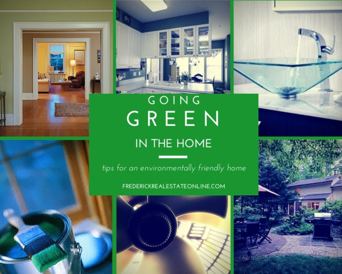 Going Green and Saving Green in the Home