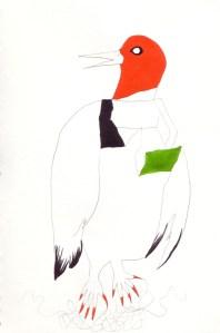 Knitting Bird , encre et graphite, Blaize