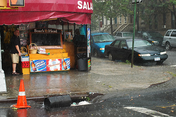 Bodega Rain Shelter, 2005, photo by Fred Hatt
