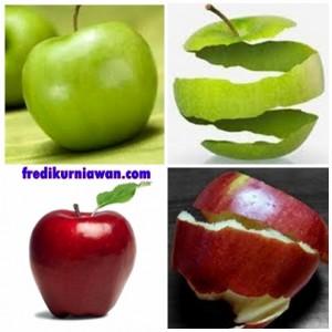 buah dan kulit apel