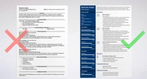 Importance Visuelle du CV