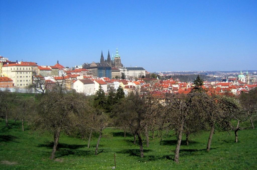 Prague seen from a garden