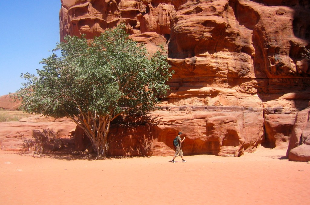 Man in the Wadi Rum
