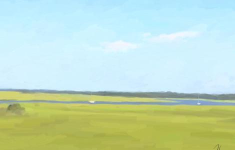 day 542 marshland