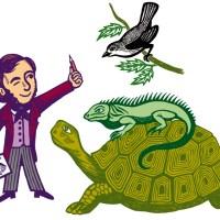 Darwin, une aventure scientifique !