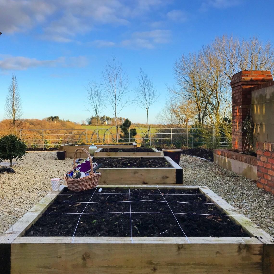 Layout for a Square Foot Garden, Potager Garden, Kitchen Garden