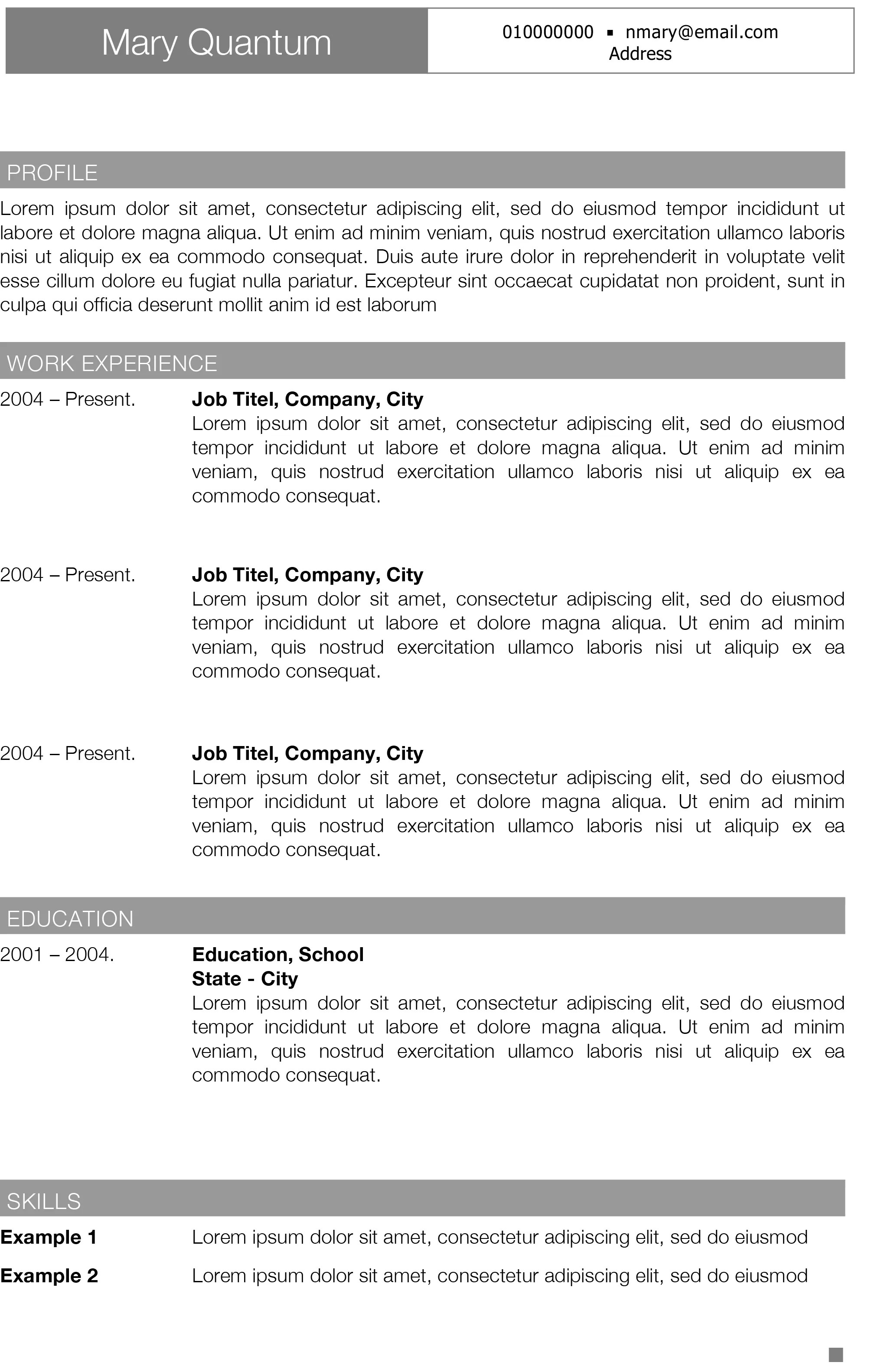 Element Grey Modern And Professional CV Template