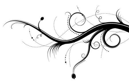 Vector-Floral-Ornaments-preview5-450x285