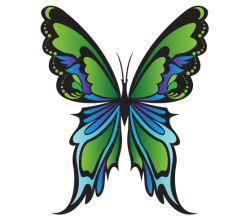 Free Green Butterfly Vector Image