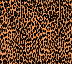 Vector Leopard Print Graphics