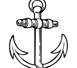 Vector Anchor