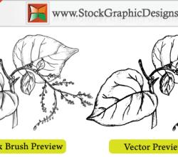 Sketchy Plant Free Vector Illustration