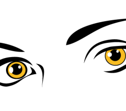 Yellow Eyes Vector Art