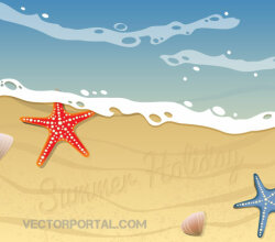 Summer Beach Background Design with Starfish, Shells