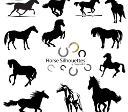 Vector Horse Silhouettes Free