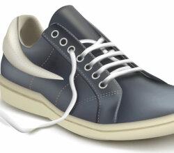Sneaker Free Vector