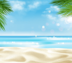 Sea Beach with Palm Tree Leaves