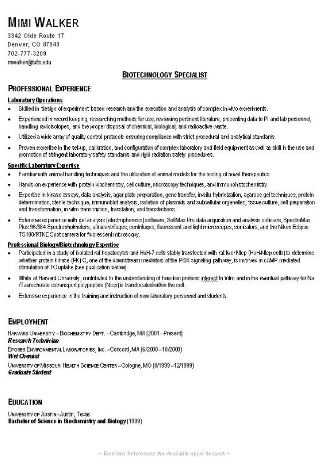 Example Great Resume - Template