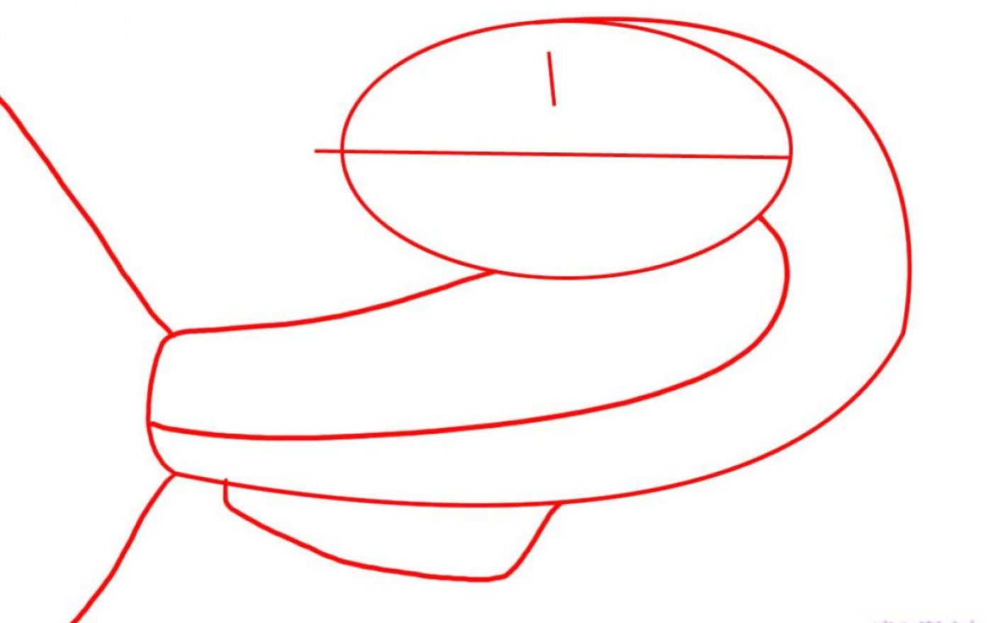 how to draw a catfish step by pictures 3