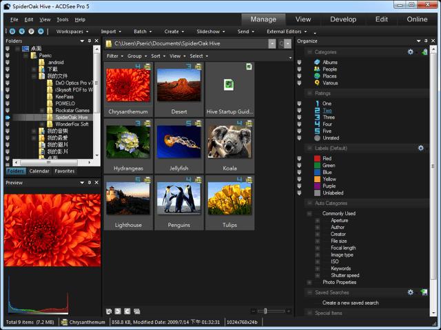 ACESee Pro 5 專業相片編輯器、相片管理軟體,限時免費下載!