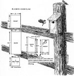 birdhouse plans for bluebirds