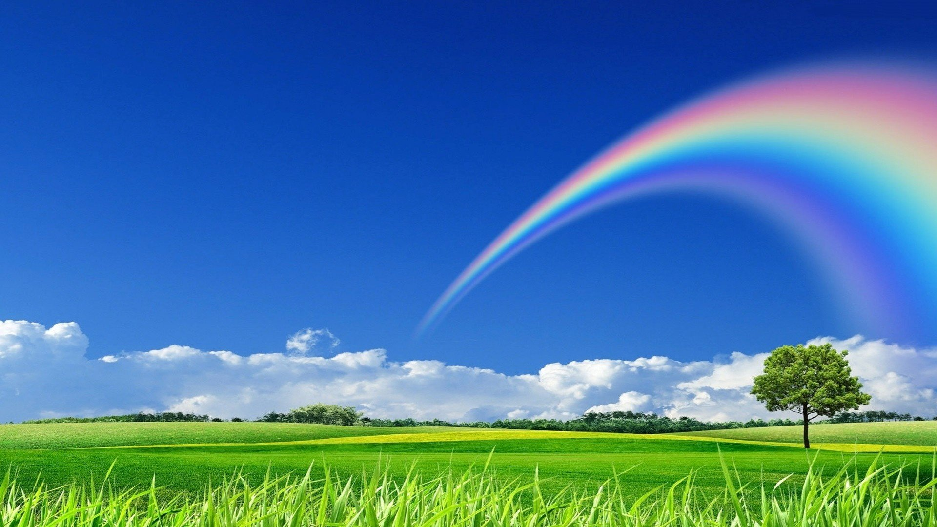 Page 5 Of Rainbow Wallpapers Photos And Desktop Backgrounds
