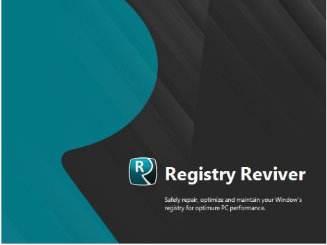 Registry Reviver 4.22.0.26 crack