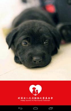 dog_cat_save_001