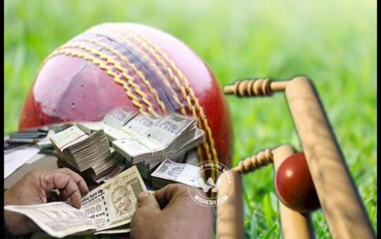 Betting on cricket in india