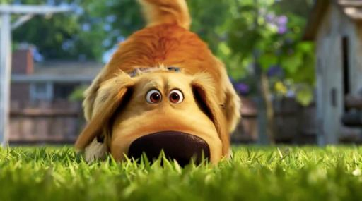 'Dug Days' starring the lovable dog from 'Up' set to debut on Disney Plus