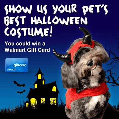 Purina Mystery Mansion Instant Win Game