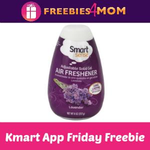 Free Smart Sense Air Freshener Cone at Kmart