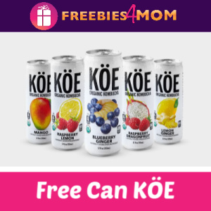 Free Can KÖE Organic Kombucha