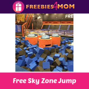 Free Jump at Sky Zone for Federal Employees