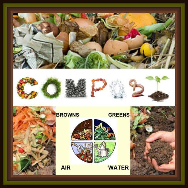 composting collage