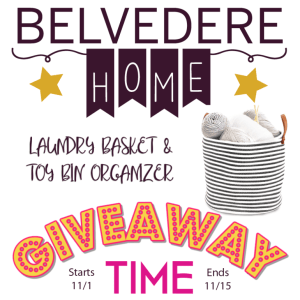 Belvedere Home Laundry Basket and Toy Organizer