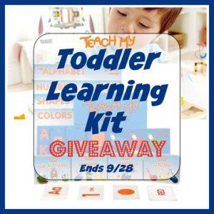 Toddler Learning Kit