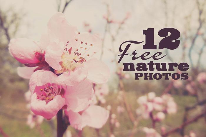 12 Free Nature Photos