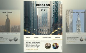 City Profile Widget PSD