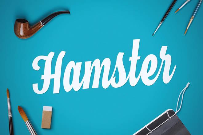 Hamster Script Free Typeface
