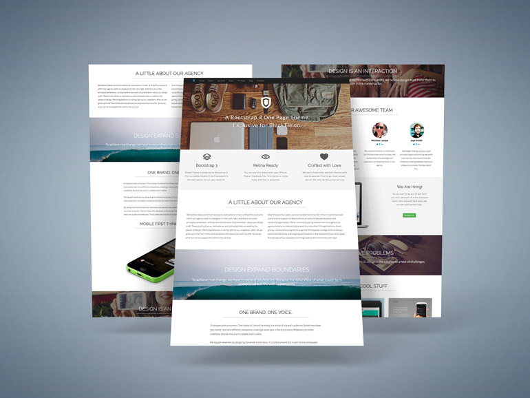 Shield : Responsive One Page Theme for Business