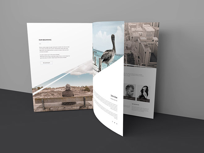 Free Three Page Brochure Mockup PSD