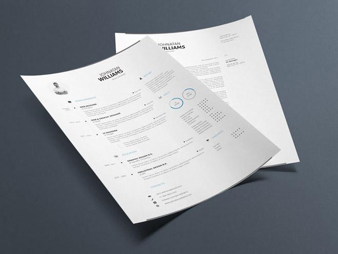 free minimal resume templates  doc and idd