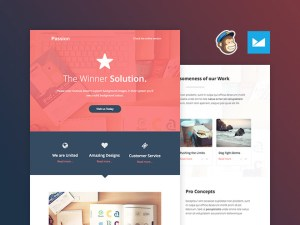 Passion : Free Responsive Email Template