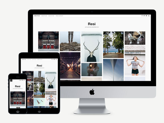 Resi : Free Responsive Gallery Wordpress Theme