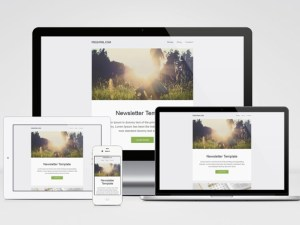 Free Responsive Newsletter Template (PSD and HTML)