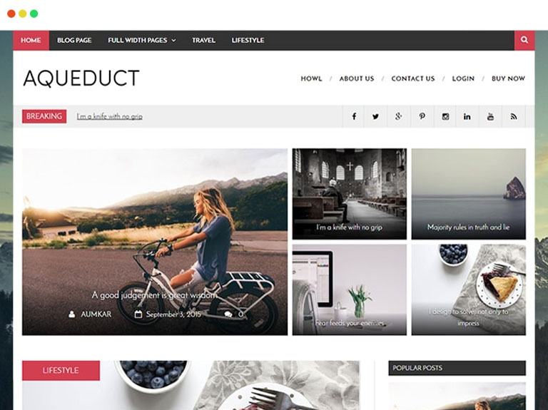 Aqueduct : Free Magazine WordPress Theme