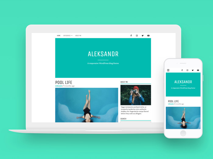 Aleksandr : Minimal Personal WordPress Theme