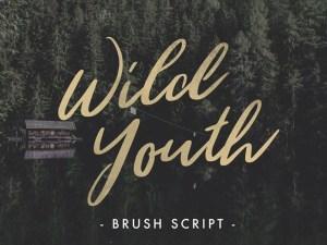 Wild Youth : Hand Drawn Brush Script Font