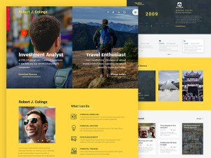 Colingz - Personal PSD Website Template